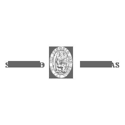 anunciaris_publicidad_diseno_web_logotipo_senorio_de_las_vinas